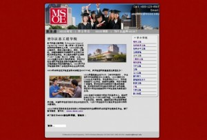 chinese-website